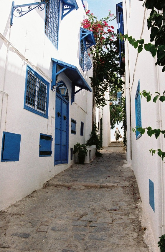 Travel Diary: Sidi Bou Said, Tunisia | Gypsy Rova Blog